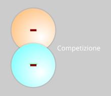 Competizione