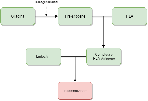 Genetica della celiachia
