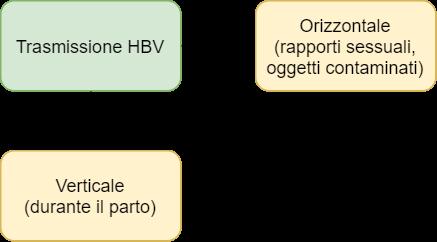 HBV - trasmissione orizzontale e verticale