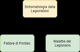 Sintomi associati alla Legionellosi