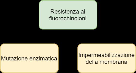 Resistenza ai fluorochinoloni